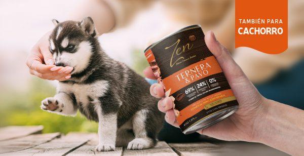 Lata paté para perro adulto y cachorro puppy de cualquier raza a base de proteina de ternera y pavo premium grain free sin cereal