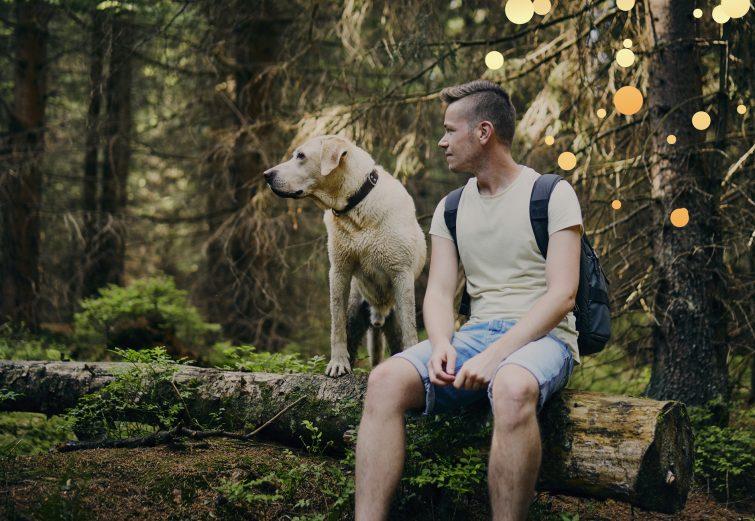 Perro con su adoptante. beneficios del pienso hipoalergénico