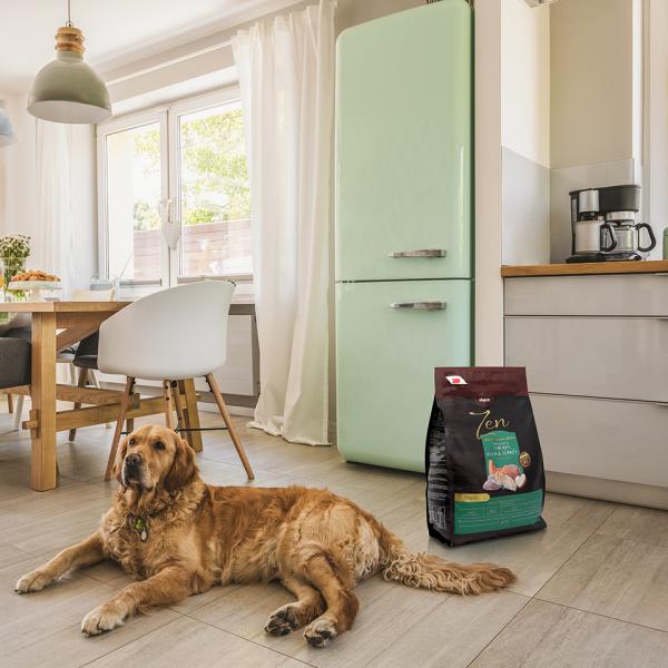Perro en su hogar con Zen Natural Balanced Nutrition duck and turkey