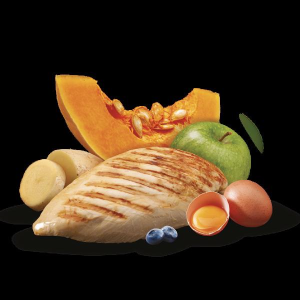 nutricion mascotas ingredientes chicken pollo sin cereal premium comida humeda lata perro adulto