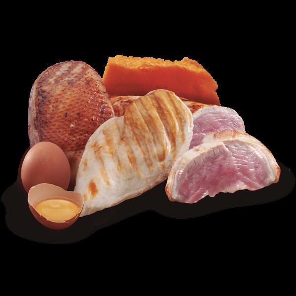 nutricion mascotas ingredientes turkey duck chicken pollo pavo pato sin cereal premium comida humeda lata perro mini