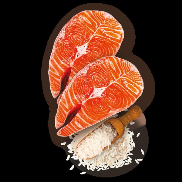 nutricion snacks treats chuche mascotas ingredientes salmon arroz rice premium barritas sticks perros adultos grande pequeño