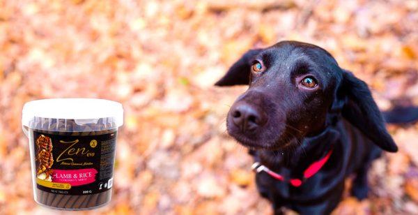 Zen evo sticks treats snacks para perros sabor a cordero
